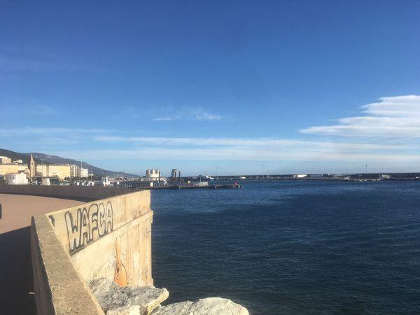 Le port de Bastia, totalement vide, ce matin