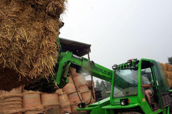 En 2011 déjà, les agriculteurs avaient dû faire appel à la solidarité pour récupérer de la paille, ici dans la Marne