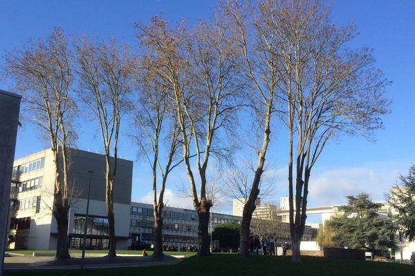 Université Rennes 2 : une rentrée sur mesure encore pleine d