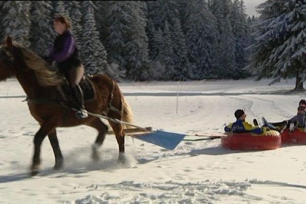 Le horse tubing, sensations garanties parait-il !