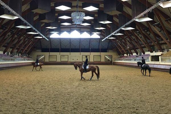 Les chevaux et les cavaliers du Cadre noir de Saumur continuent à s'entraîner mais le rythme a été allégé.