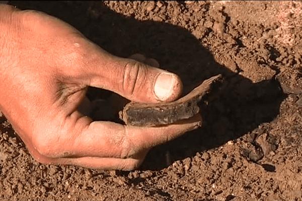 Des dizaines de morceaux de poterie sont déterrés et répertoriés