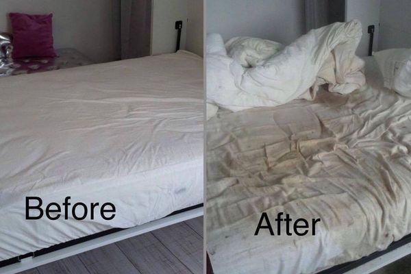 Les mésaventures d'une propriétaire, sur Airbnb.