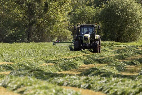 La récolte du fourrage est un moment important de l'année pour les agriculteurs