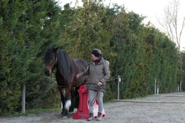Faire passer le cheval dans un passage étroit, sans forcer et sans résistance.