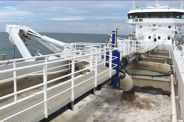 Un sablier extrait du granulat marin aux larges des côtes de la Charente-Maritime en juin 2018.