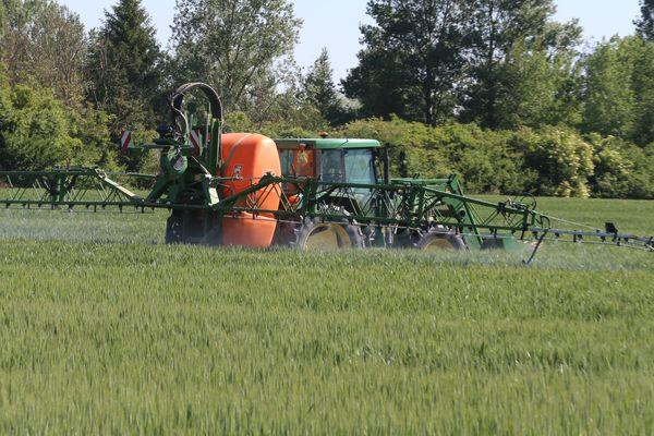 Epandage d'un champ de blé