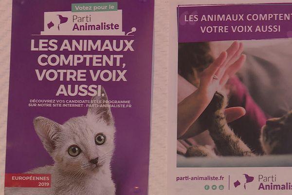 """La liste """"Toulouse animaliste"""" fait campagne avec seulement 15 000 euros de budget"""