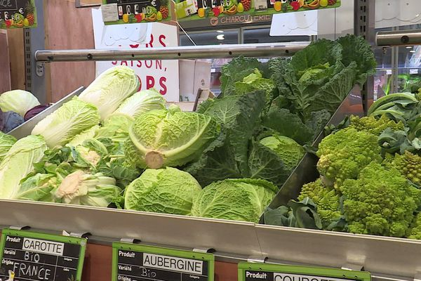 Nos meilleurs alliés pour renforcer notre immunité sont les légumes verts