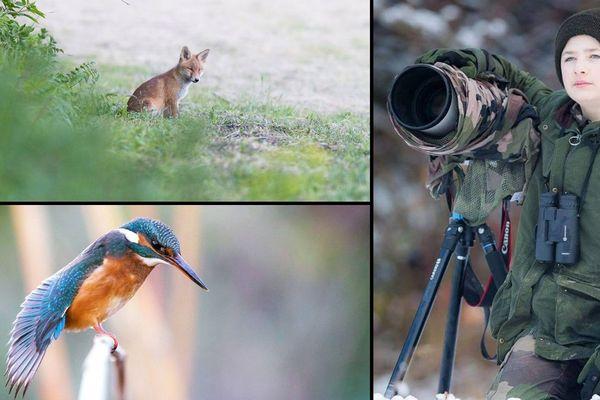 Gauthier Poiret, photographe animalier