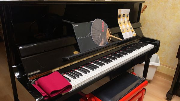 Le prix de la passion : quelques milliers d'euros pour débuter, s'essayer sur un vrai piano, et se découvrir peut-être  un vrai talent