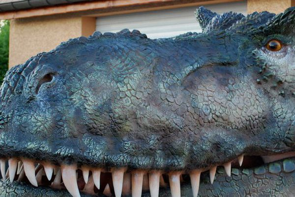 Un dinosaure made in Franche-Comté