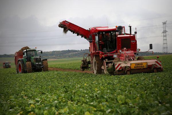 Inquiétudes pour les exploitants agricoles pendant la récolte