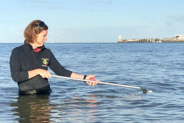 Marie Bouet, technicienne à la mairie de Royan, traque les bactéries sur le bord de l'océan.