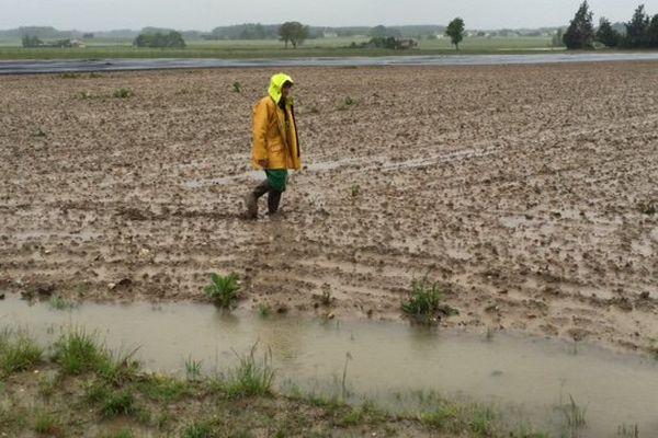 A Ouzilly dans la Vienne, James Godu parcourt ses champs recouverts d'eau et d'une épaisse couche de boue.