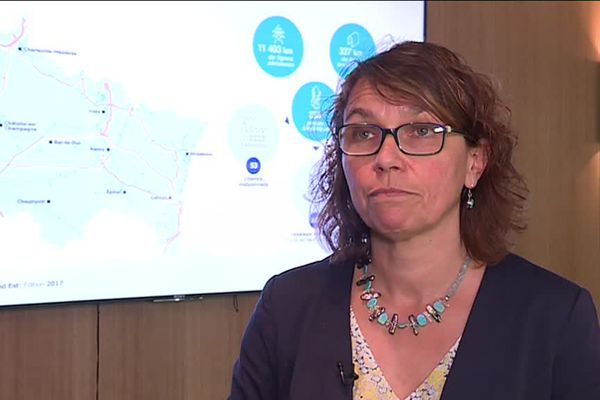 Elisabeth Bertin, déléguée RTE Est