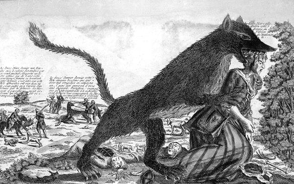 Gravure illustrant la bête du Gévaudan