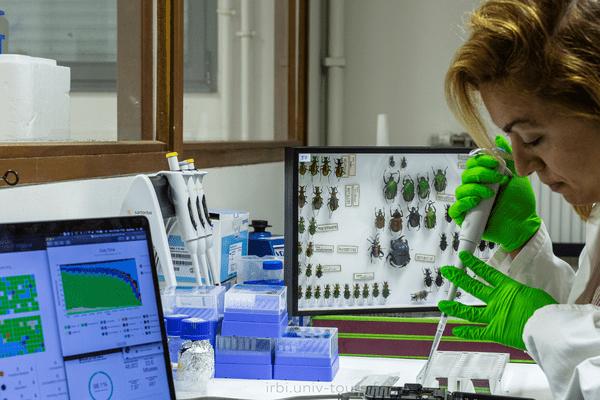 30 chercheurs de différentes disciplines travaillent en permanence pour l'IRBI / © IRBI