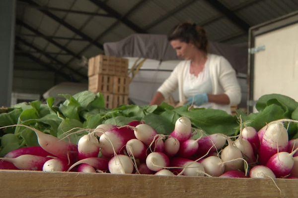 Pendant le confinement, le Conseil Départemental des Hautes-Alpes finance l'achat des fruits et légumes des producteurs locaux pour les donner à la Croix-rouge