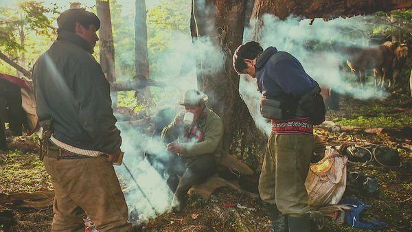Les cow-boys de Patagonie : une vie dans les steppes sauvages de la Terre de feu!