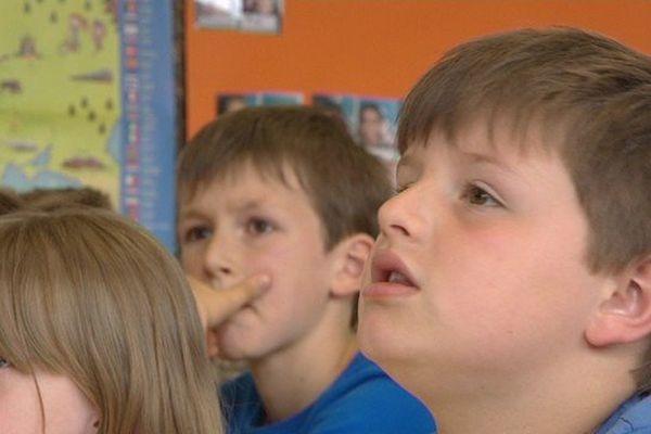 Des écoliers de Bergues en pleine séance d'initiation au flamand