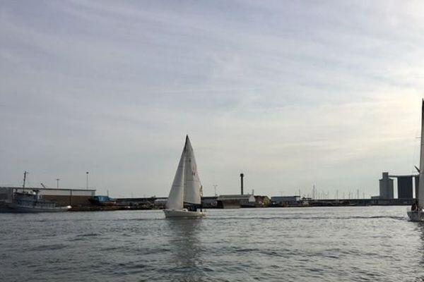 8 bateaux type J80 sont utilisés pour les baptêmes de voile à la Transat Jacques Vabre.