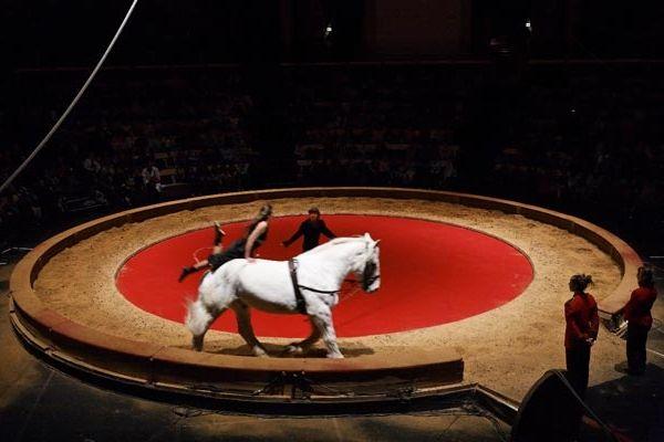 Cirque situé à Noailles dans l'Oise, est dirigé par Valérie Fratellini.