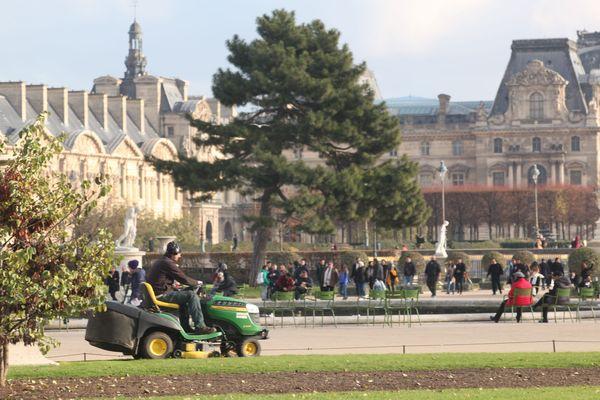 La ville de Paris, avec quatre autres villes, interdit totalement l'usage des pesticides sur son territoire.