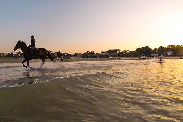 Du wakeboard tracté par un cheval dans le Havre de Rothéneuf (35)