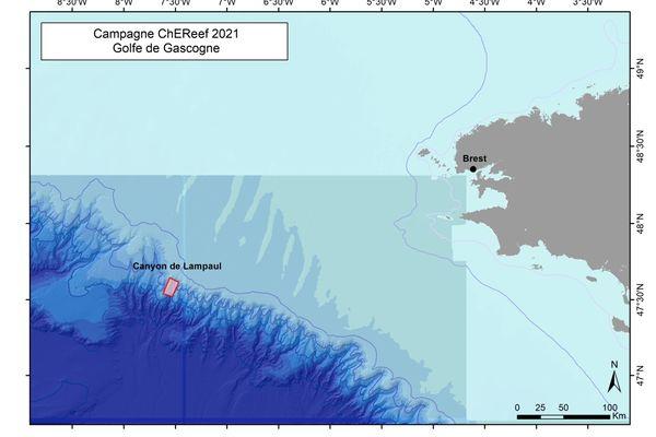 La zone d'étude des coraux d'eau froide du programme Chereef, au large de la Bretagne