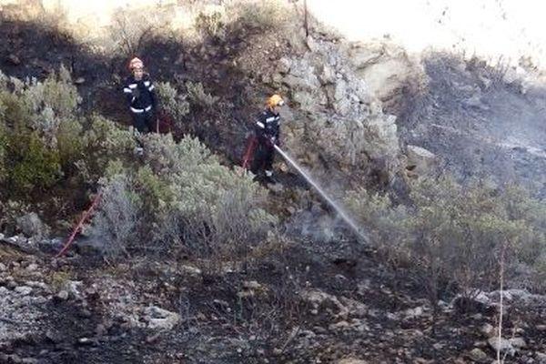 Plusieurs hectares sont partis en fumée dans ce massif escarpé et difficile d'accès