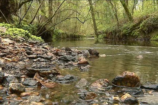 Le courant passant dans les méandres du cours d'eau répartit les sédiments qui protègent ainsi les rives