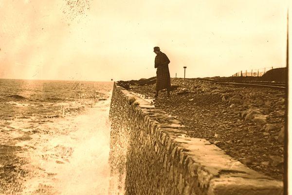 Plaque stéréoscopique en verre, paysage de Charente-Maritime, première moitié du XXe siècle