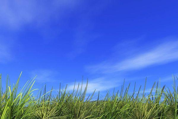 Un ciel bleu (image d'illustration).