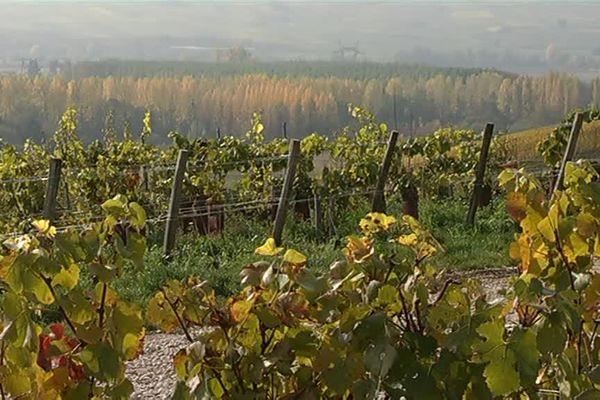 Xavier Claeys / France 3 Champagne-Ardenne