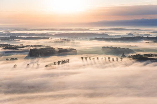 Brumes de l'aube dans le Sundgau