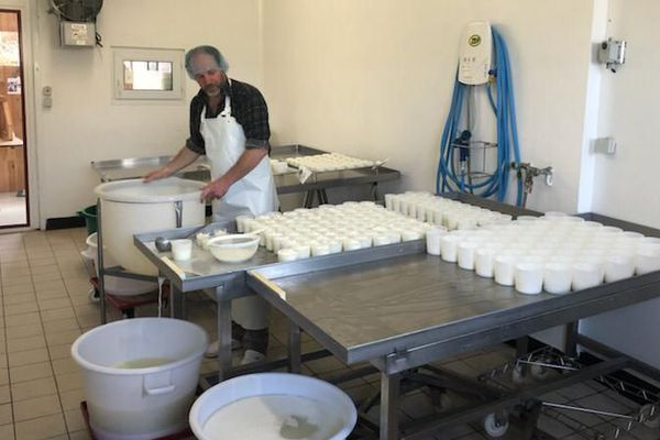 Sébastien Dole, éleveur de chèvres à Grandrieu, en Lozère, fabrique une grande variété de fromage. Avec 60 chevreaux sur les bras, il risque de manquer de lait.