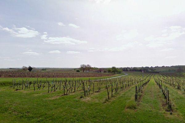 Saint-Eugène, en Charente-Maritime, un village au milieu des vignes.