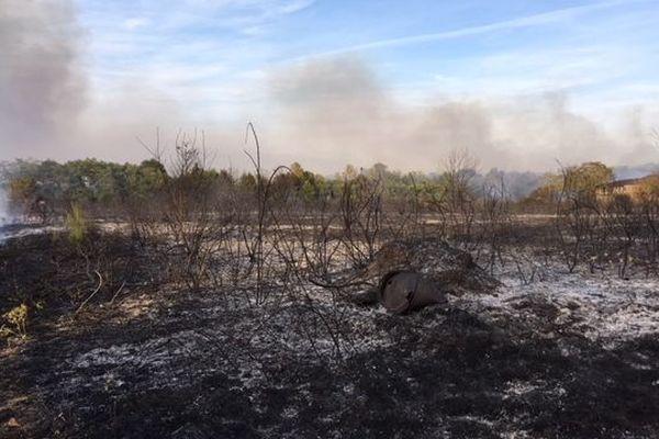 4 hectares sont partis en fumée sur le bord de la route.