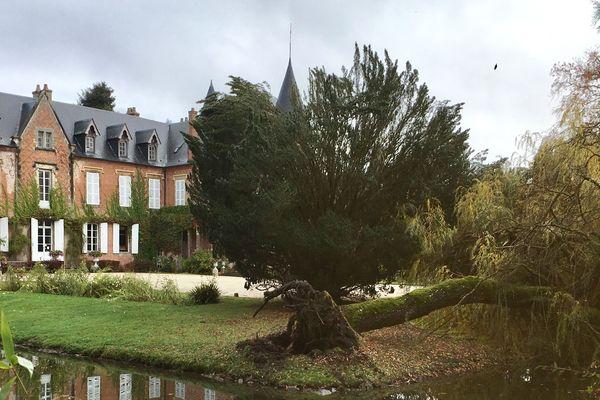 Plus de 200 mètres cube de branches par-delà les allées dans l'arboretum de Balaine dans l'Allier.