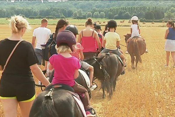 Les Shetlands du poney-club des Champs Bleuets ont pour mission de faire découvrir les joies de la ferme