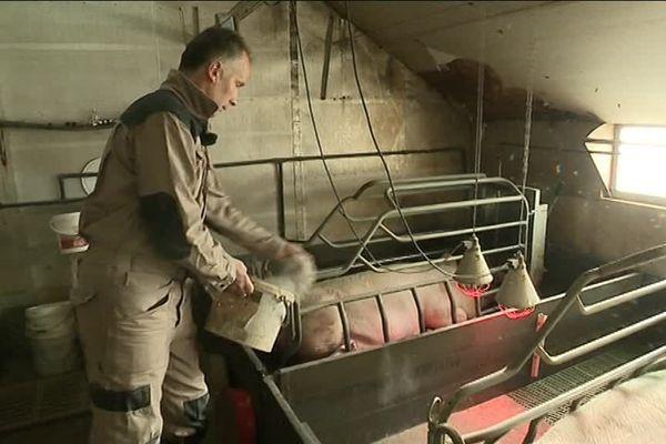 Dominique Lauwerier investit depuis vingt ans dans son élevage porcin, mais la chute des prix l'empêche de se projeter sereinement dans l'avenir.