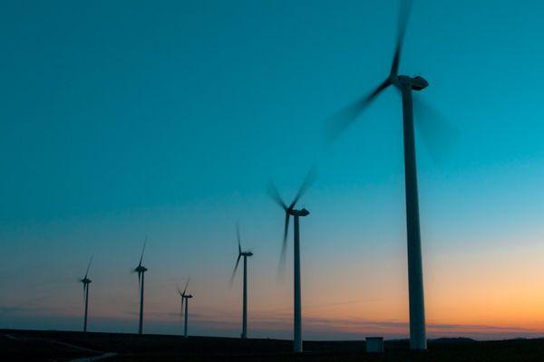 Les manifestants ne souhaitent pas voir s'installer des champs d'éoliennes à l'image de celui-ci. Ils souhaitent des études plus approfondies.