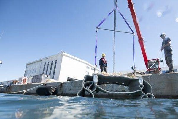 En juin 2020, des blocs de béton fabriqués par Seaboost ont été immergés dans la rade de Toulon pour offrir des cavités aux poissons : des nurseries artificielles.