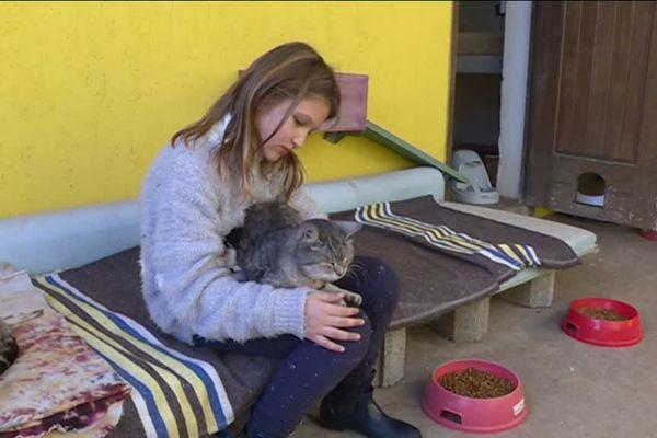 Mathilde a organisé la collecte pour les animaux de la SPA.