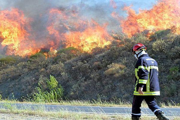 Gabian (Hérault) - le feu attisé par une forte tramontane a détruit au moins 100 hectares - 10 août 2016.