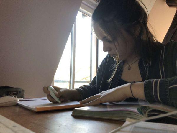 Le travail en mode confinement se passe bien mais Julia est plutôt soulagée de ne pas devoir préparer le bac sous cette forme, surtout pour les épreuves de maths et physique, des matières plus compliquées à suivre à distance.