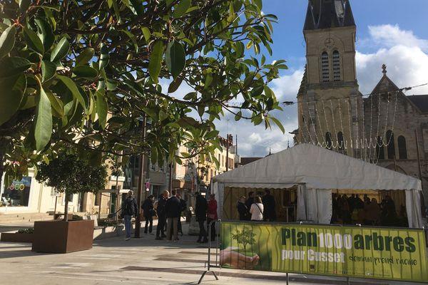 La première distribution de 500 arbres a eu lieu le 9 novembre à Cusset. Une autre est prévue au printemps 2020.