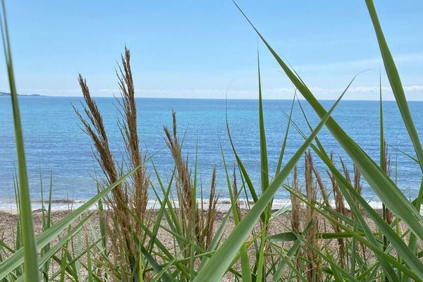 Sur les plages autorisées à accueillir du public, la marche et la baignade seront privilégiées.
