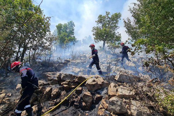 Les sapeurs-pompiers en action au col de Vence.